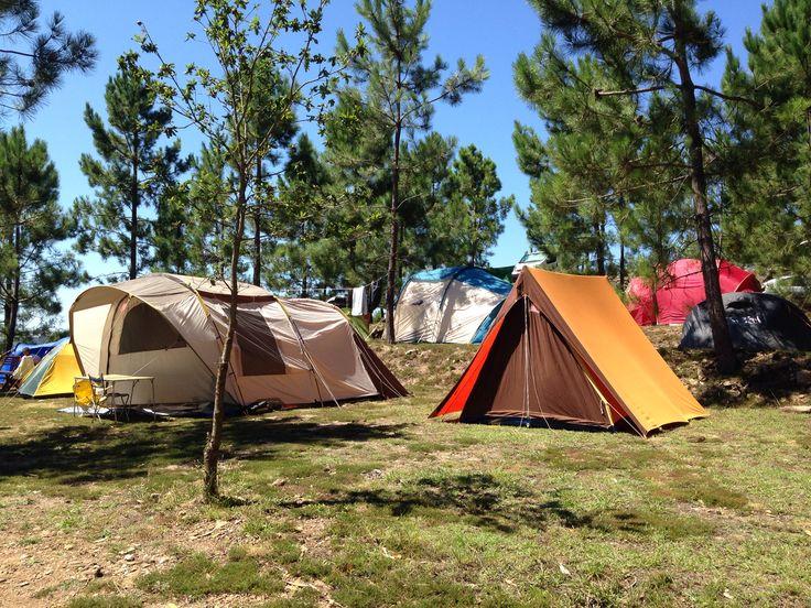 Zona nueva de acampada