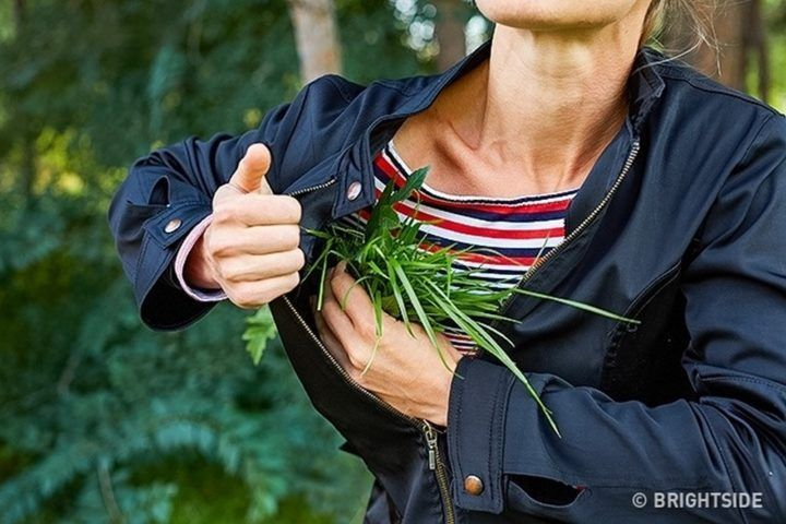 11 Wilderness Survival Tips - Stuff your clotheswith branches and grass to help stay warm. #WildernessSurvival