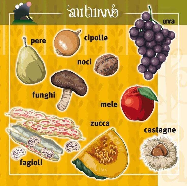 Vademecum: piccola guida per orientarsi nella #frutta e #verdura di stagione | #Autunno: pere, cipolle, uva, noci, funghi, mele, zucca, fagioli e castagne.  Qual è la tua preferita?