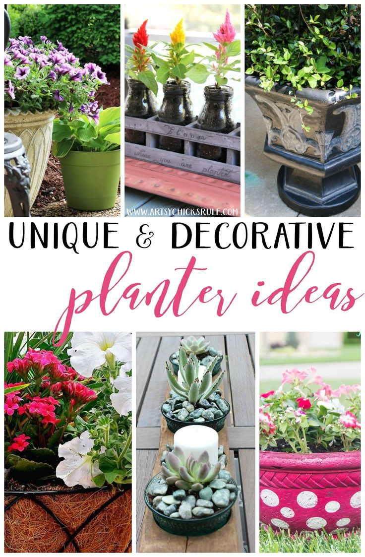 Decorating with potted plants unique planter ideas
