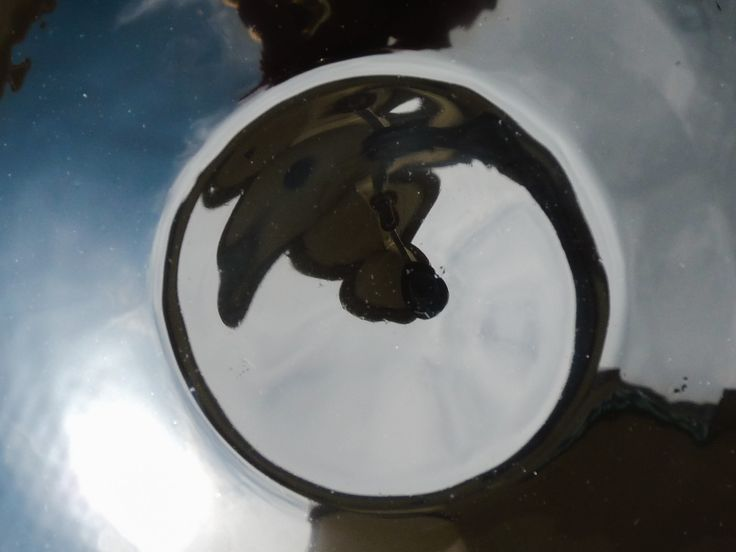 Distorted Reflection 1