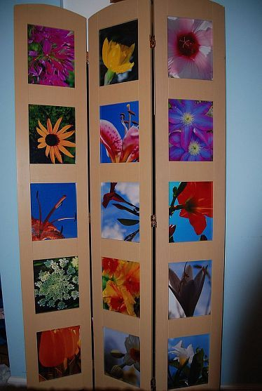 room divider with flower pics