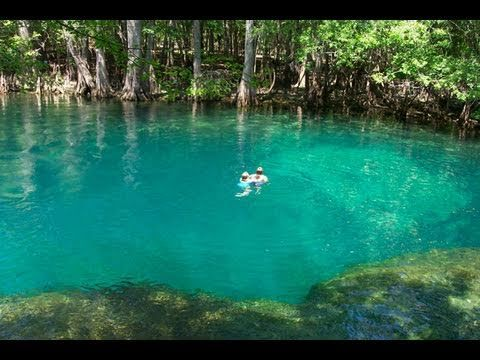 Underwater Cave Blue Spring State Park This Is One Of My