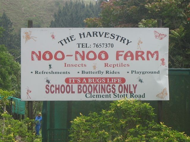 The Harvestry - Noo-Noo Farm & Savage Jungle - School outings to see insects and conquer the maze