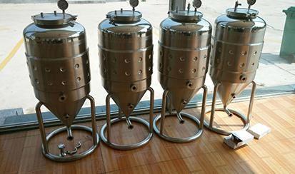 50L single layer fermenter