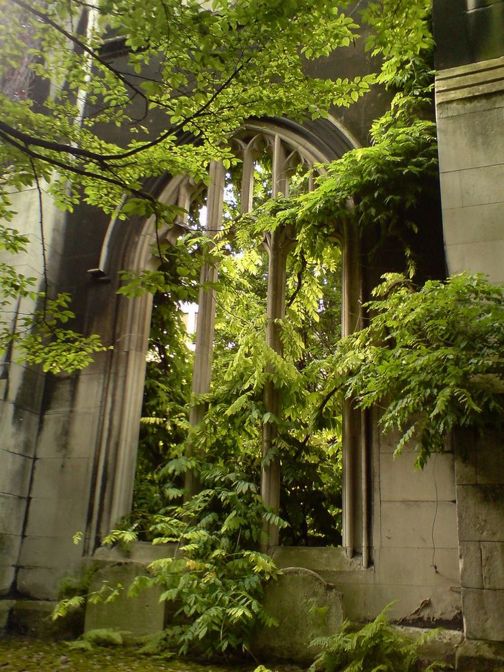 Strawberry Hill, St Dunstan in the East, Neal's Yard