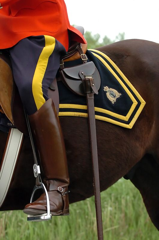 """The musical ride of the Royal Canadian Mounted Police"" ... up close and personal!"