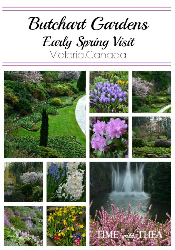 Butchart Gardens Early Spring Visit (With Images