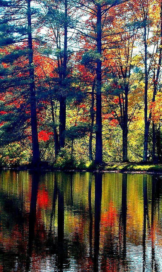 ** Fall in the Adirondacks