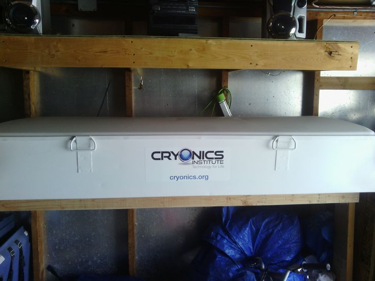 cryonics death in the deep freeze  crack