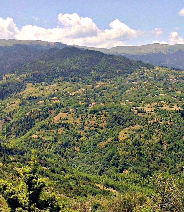 Το Παλαιοχώρι αρχισε να χτίζεται μετά απο τα μέσα του 19ου αιώνα. Ωστόσο κατα την παράδοση, παλιότερα μέσα στο ιδιο γεωγραφικό χώρο, υπήρχε χωριό που διαλύθηκε με την επικράτηση τω Τούρκων στη Φθιώτιδα.
