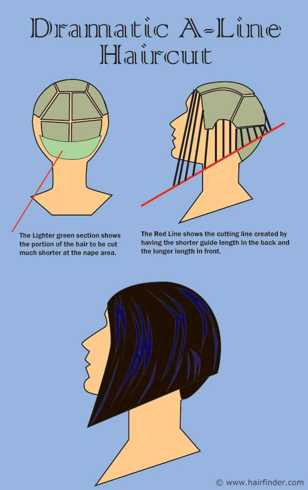65 Best Diagram Haircut Images On Pinterest