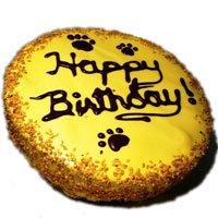 Wet Noses Dogg Candy Yellow Birthday Cake Dog Treat