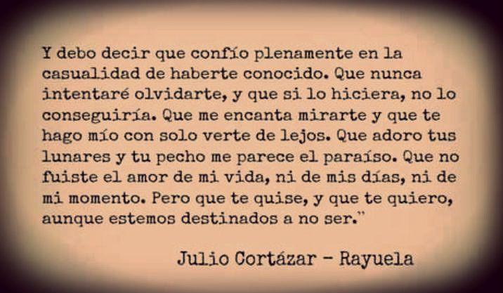 No fuiste el amor de mi vida Rayuela - Cortázar