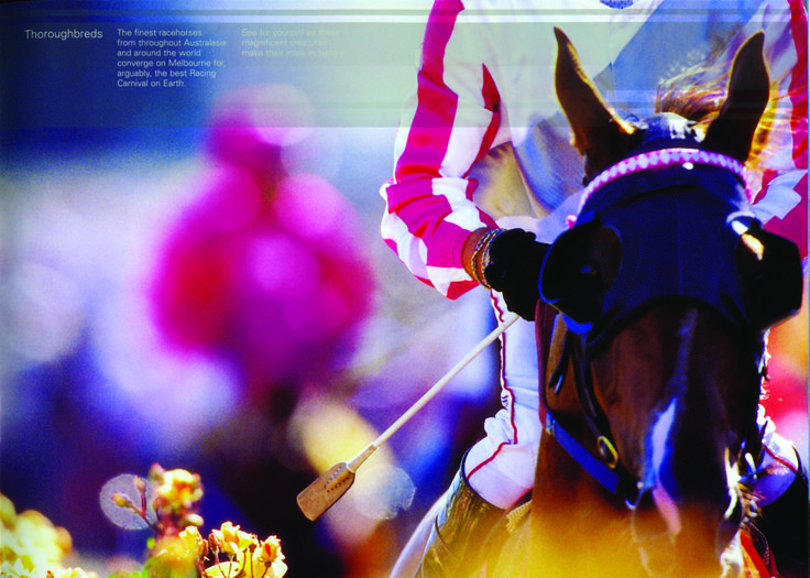 Davidson was honoured to create the brand for the Melbourne Cup, which really is on the world's stage. We developed the brand identity, visual language, signage, stationery, marketing collateral and visual standards manual - all capturing the vibrancy and spirit of the great race.