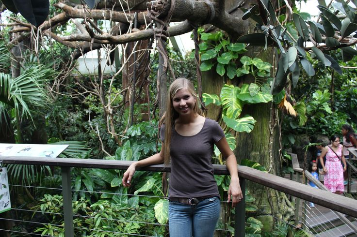 Central Park Zoo in New York City | 3rd Culture Wife