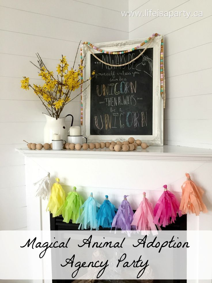 Magical Animal Adoption Agency Birthday Party: create your own agency with stiffed animals and activities for the perfect birthday party.
