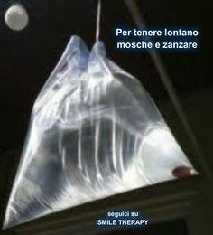 In modo naturale: Repellente per zanzare e mosche