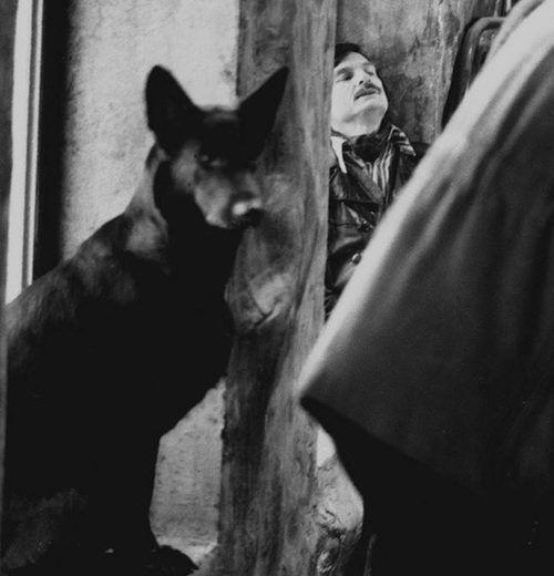 """Andrei Tarkovsky en el rodaje de """"Stalker"""" (1979) – LA NOCHE INTERMITENTE"""