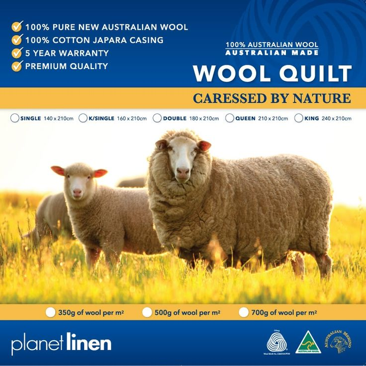 This quality quilt is all Australian; made from 350gsm Australian pure new wool. Selected from a special breed of Merino sheep, whose fibres offer resiliance, density and fine texture encased in 100% cotton japara cover.