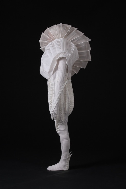"""The award-winning World of Wearable Arts entry """"Second Skin"""" by Hayley May and Fiona Christie, of Wellington, New Zealand."""