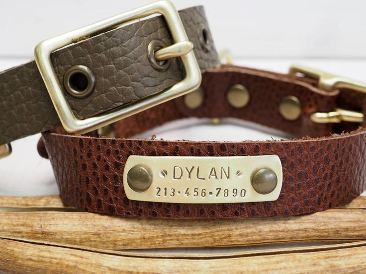 Dog Collar, Leather dog collar, Personalized Dog Collar, Pet Gift, Dogs Name Plate, id Tag, Rustic Brown, Small Dog collar, Oil Green Collar by VacForPets on Etsy
