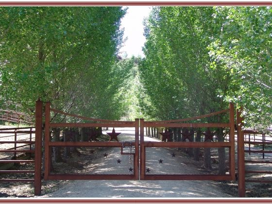 Best images about gates on pinterest rusted metal