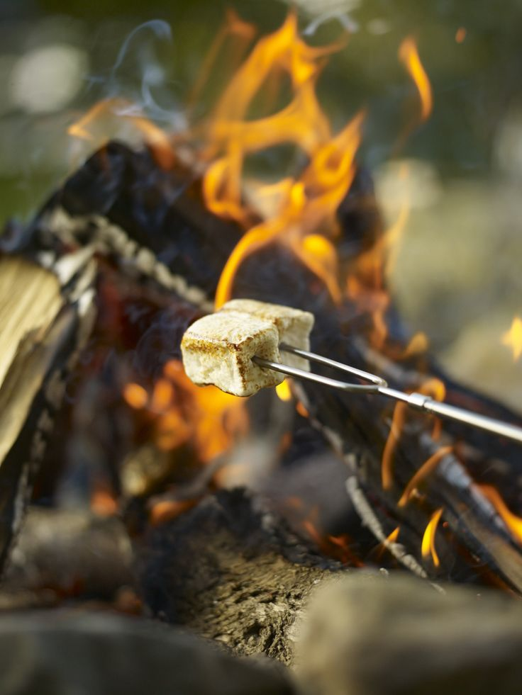 Our menu for a backyard cookout including rib eye steaks, grilled skewers and s'mores!
