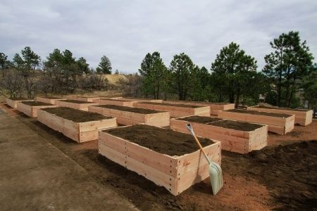 How to Build Raised Vegetable Garden Beds Years ago, when I decided to pick up gardening, I did what I thought you were supposed to do to have a successful garden. That included tilling a huge section of my yard, and planting rows and rows of plants. My yard at that time was very small …