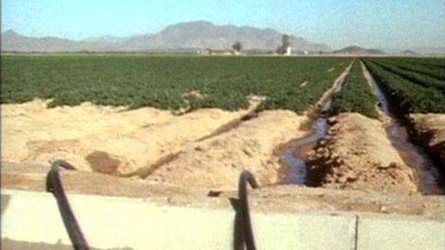 Z veľkých púští na juhu Ameriky sa podarilo spraviť úrodné polia a plantáže. Cena za ne je  však vysoká – presolené toky a mŕtve rezervácie. Navyše ich musí dotovať štát.