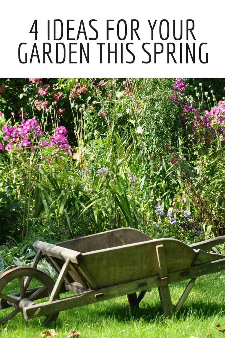 Looking for some ideas to help you brighten up your garden for spring? Then check this out!
