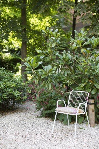 grindtuin met rododendronbos, antwerpen