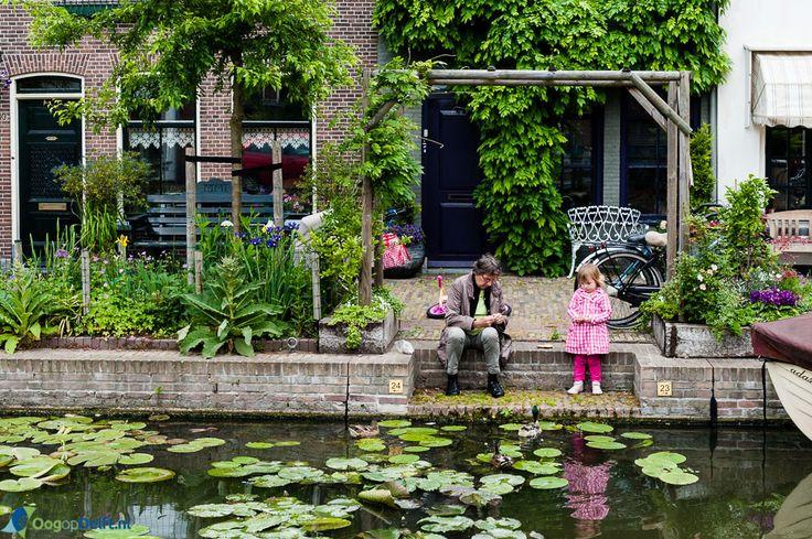 Oog op Delft - Eendjes voeren
