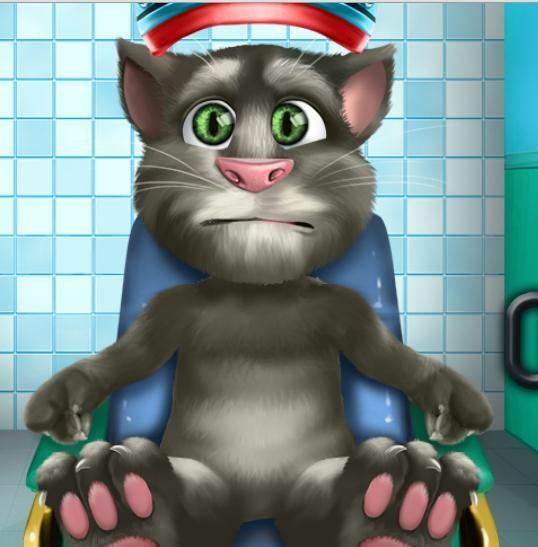 Говорящий Кот Том Как Похудеть. Как заставить кошку похудеть?