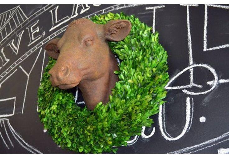 Best 25 Cow Head Ideas On Pinterest Cow Skull Art Cow