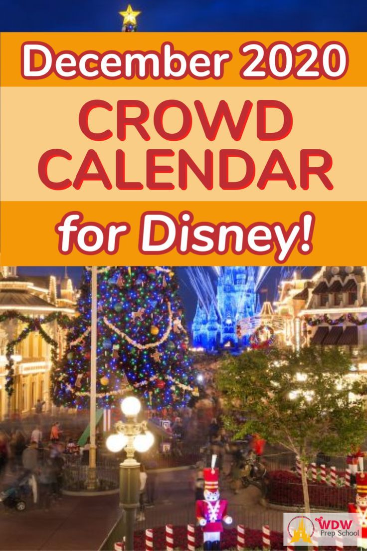 Christmas Vacations 2020 Specials December 2020 Disney World Crowd Calendar in 2020   Disney world