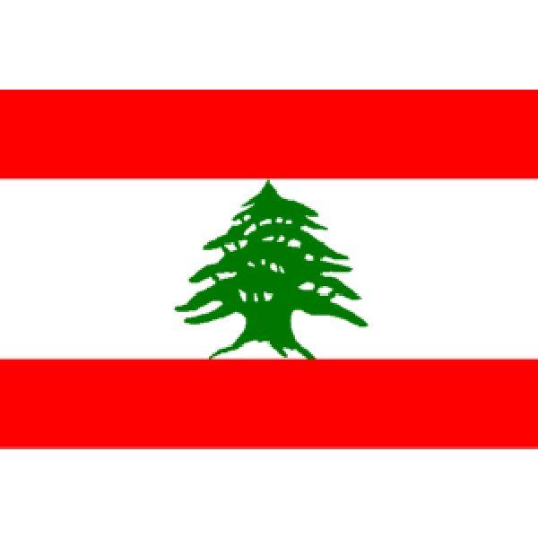 Billedresultat for libanon flag