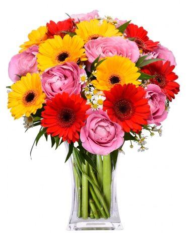 Rozvoz květin CARMEN gerbery + růže