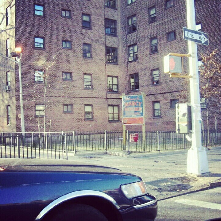 Giant Rat Killed With Pitchfork At Brooklyn's Marcy Houses (PHOTO)