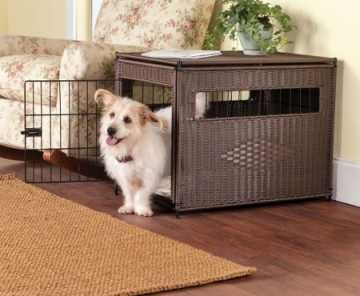 Crate Training a Puppy Tips