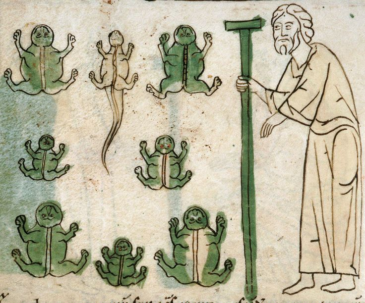 collection of medieval images updated on a regular basis