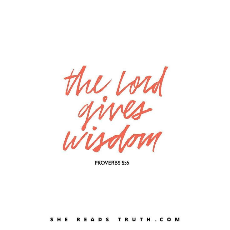 For the LORD grants wisdom! From his mouth come knowledge and understanding. (Proverbs 2:6 NLT) #scripture4atm