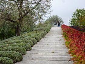 Poczdam, park, BUGA, zieleń miejska, zieleń publiczna, ogród deszczowy, murawa, łąka, Volksapark Potsdam, Park Ludowy w Poczdamie