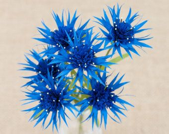 Set di 6 fiordaliso blu di carta / carta fiori-1 ° anniversario-carta carta fiore Decor-Crepe carta fiori - matrimonio - Home Decor