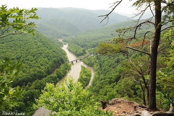 40 best images about east tennessee on pinterest on for Nolichucky river fishing