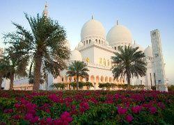 Zjednoczone Emiraty Arabskie, Meczet, Sheikh Zayed, Palmy, Kwiaty