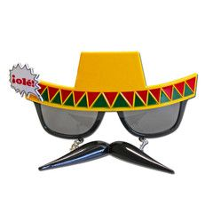 Mexican Moustache Costume Glasses | Simply Party Supplies
