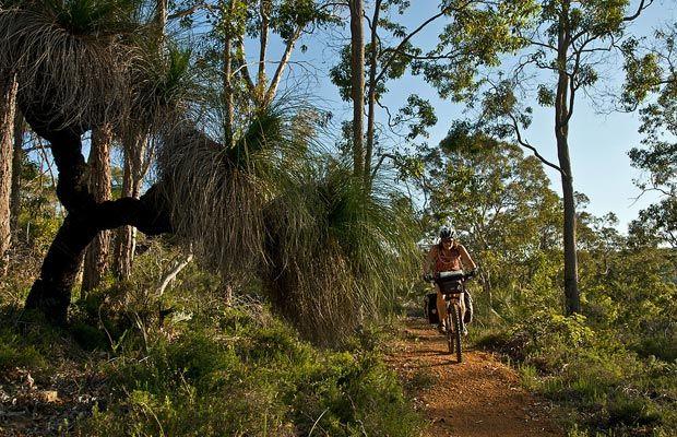 Wilderness by bike: The Munda Biddi Trail, Australia  Photo credit: Bill Hatcher
