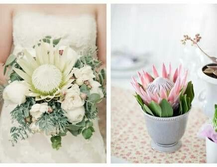 White king protea and sage wedding bouquet