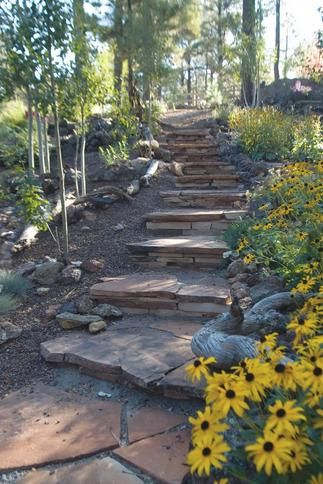 Image Detail for - ... to a sloped yard or provide a visual transition to an entryway or